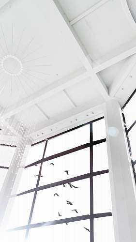 building white wooden framed glass window architecture