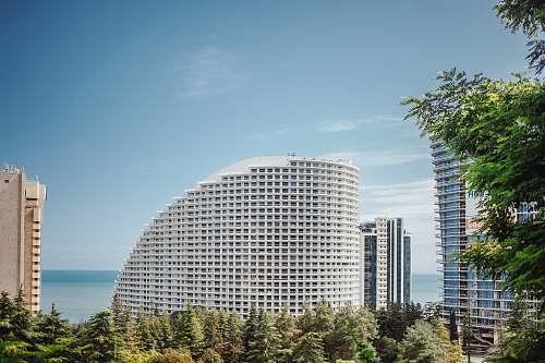 tree white concrete building under blue sky concept office building