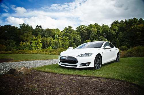 vehicle white tesla parked on green grass lawn during day time sports car