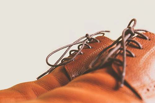 apparel closeup photo of brown leather lace-up shoes people