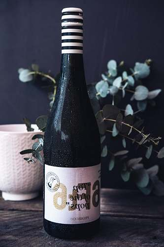 beverage Prosecco wine bottle on table bottle