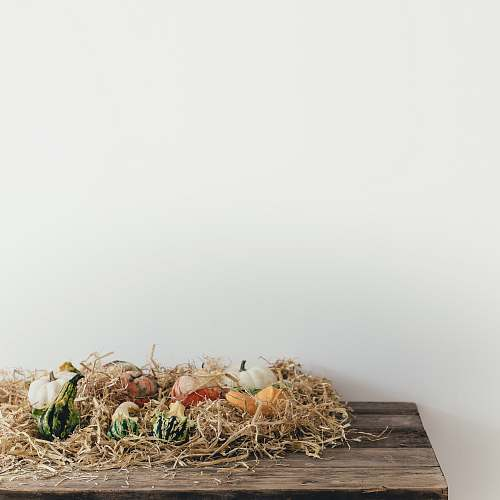 autumn white and yellow vegetable decors table