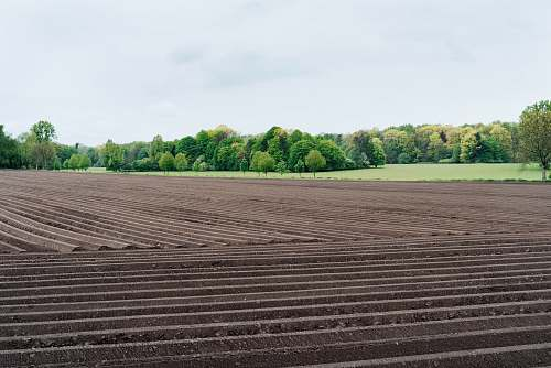 trees soil and valley farm