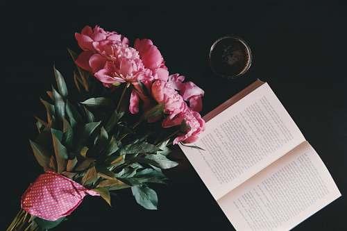 book pink petaled flowers bouquet flowers