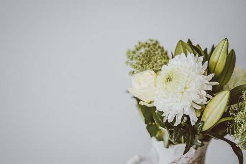 green white and yellow flower bouquet flower arrangement