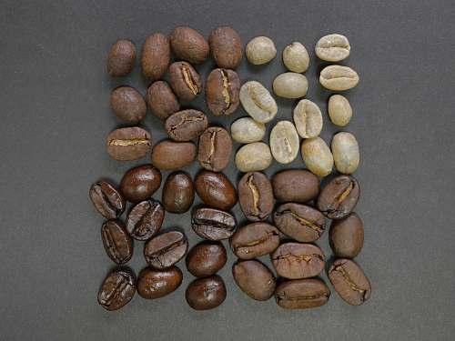 coffee brown coffee beans bean