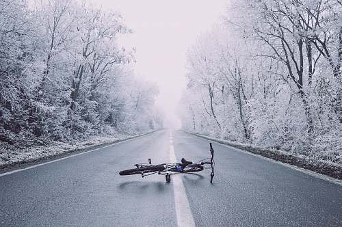 winter bicycle on road between trees photography road