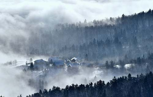 cloud houses surrounded by trees and fog fog