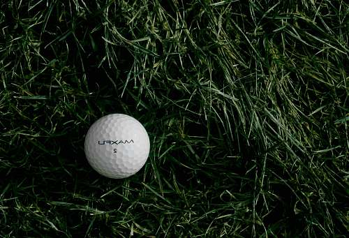 golf white Maxfu 2 golf ball on green grass grass