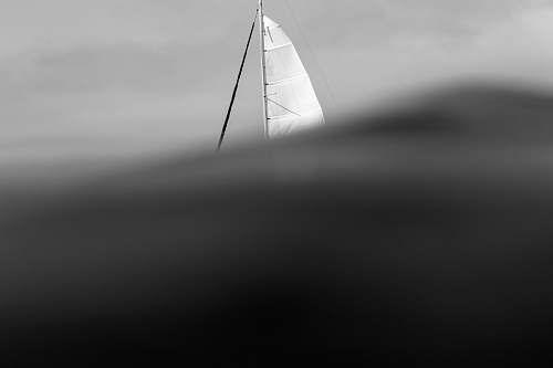 black-and-white white sailboat boat