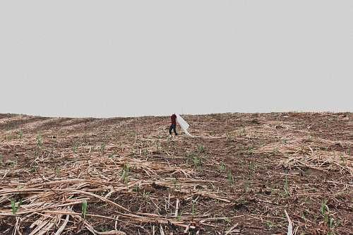 soil  nature