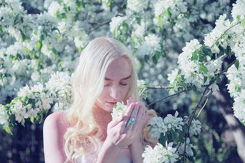 person woman smelling flower during daytime people