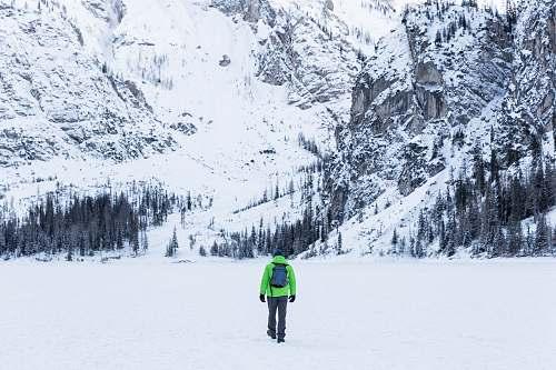 tree person in green jacket walking toward snow covered mountain braies lake