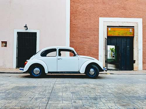 vehicle white Volkswagen beetle parked near building during daytime car