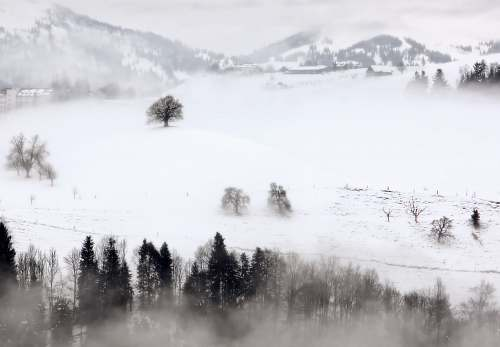 fog aerial photography of trees in snow landscape