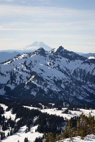 nature photo of glacier mountain tree
