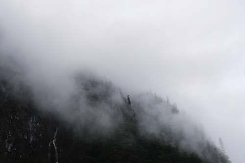 fog  weather