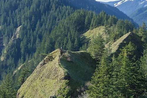 mountain green mountain during daytime tree