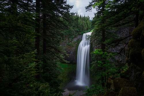 water green trees near waterfalls during daytime waterfall