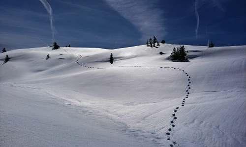 snow snow field landscape