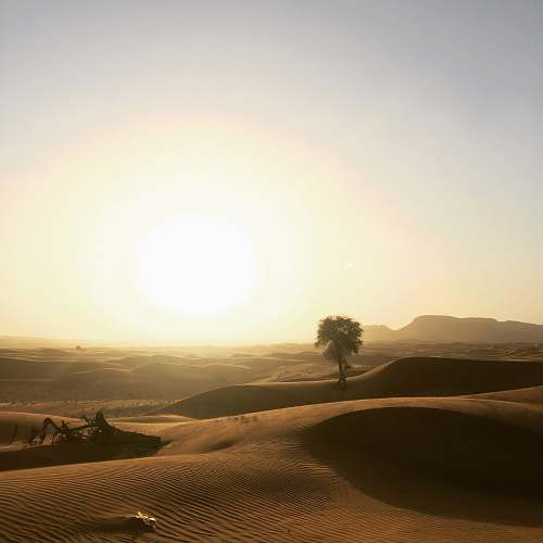 soil sand dunes during golden hour nature