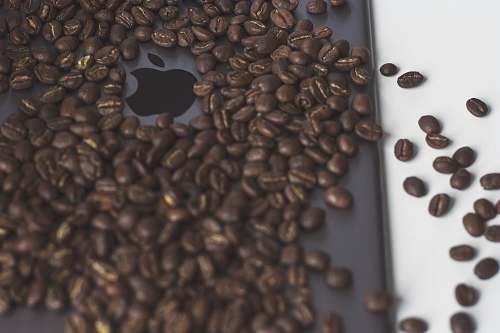 food black coffee beans lot cincinnati