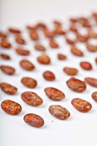 food brown seeds on table vegetable