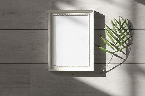 frame green-leafed beside white photo frame pineapple