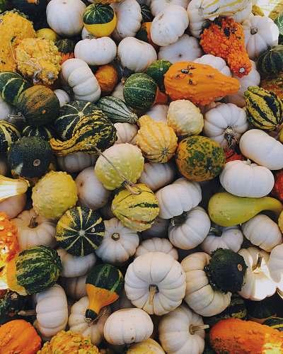 food green, white, and orange squash produce