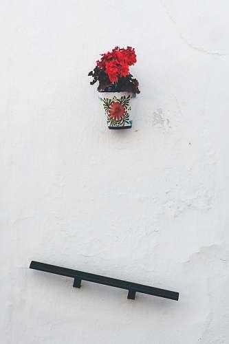 spain black shelf under red flowers in vase frigiliana