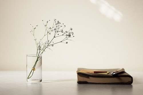 vase white petaled flower in glass vase beside book jar