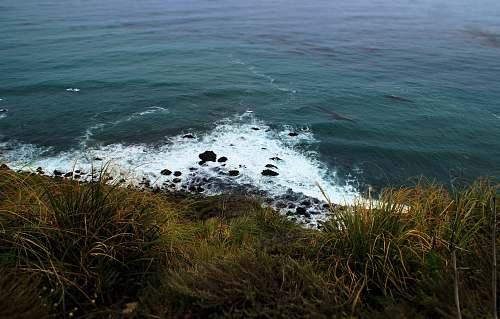 coast sea waves near grass during daytime ocean