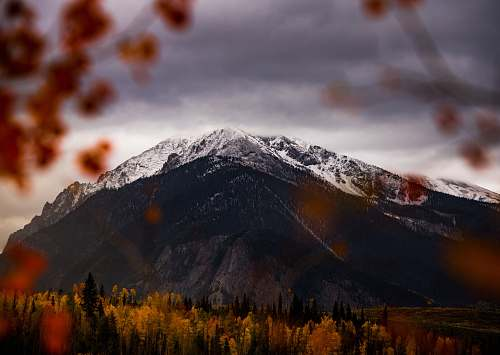 mountain brown mountain surrounded by trees during daytime mountain range