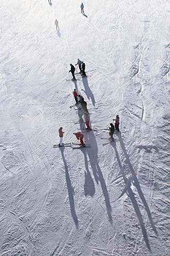 nature people skiing on snow during daytime outdoors