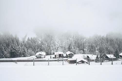 austria snow covered houses near trees winter