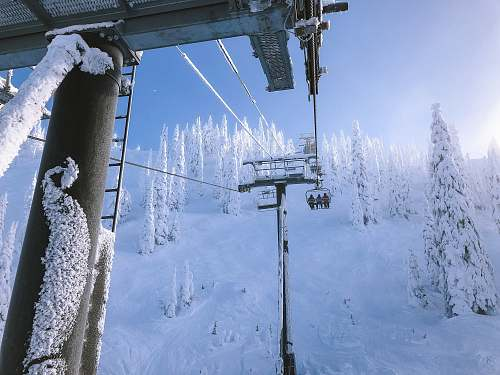 blue white and black cable transportation with three person riding near trees covered of snow at daytime ski resort
