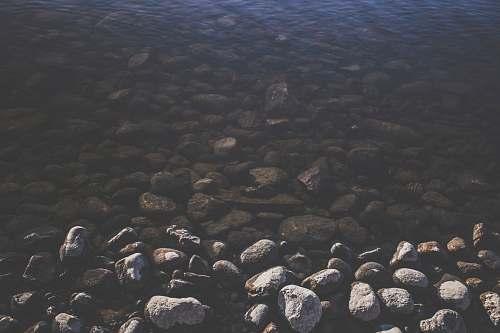 lake gray pebbles near river during daytime vegetable
