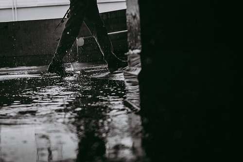 edmonton grayscale photo of water drop wet