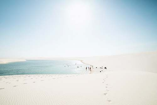 brazil body of water during daytime sand