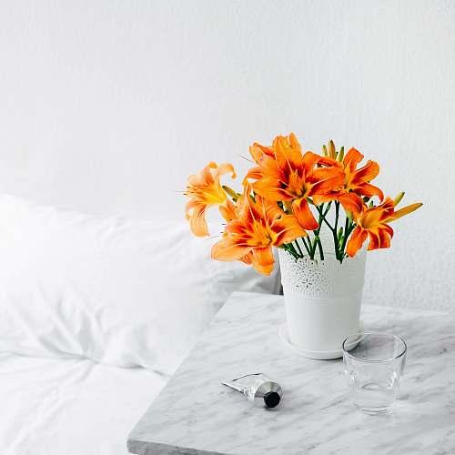 flower orange petaled flower bouquet on vase plant