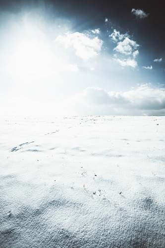 snow snow land winter