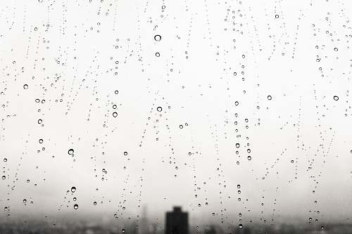 rainy water drops water drop