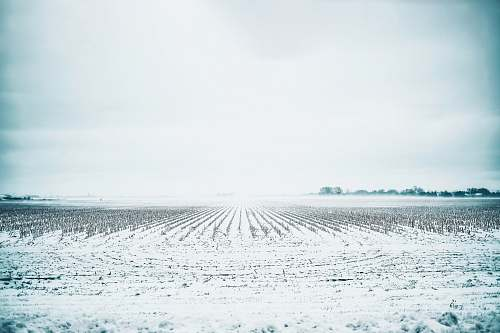 nature white field during daytime outdoors