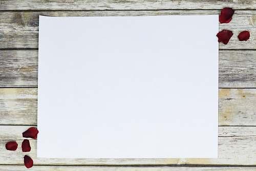 wood white printer paper white board