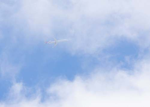 bird low-angle photo of white plane flying