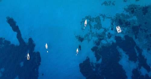 water aerial photo of sailboats sea