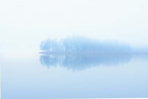 nature body of water across trees surrounded by fogs fog