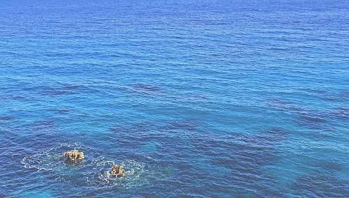 ocean body of water during daytime sea