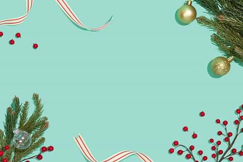 plant Christmas decor tree