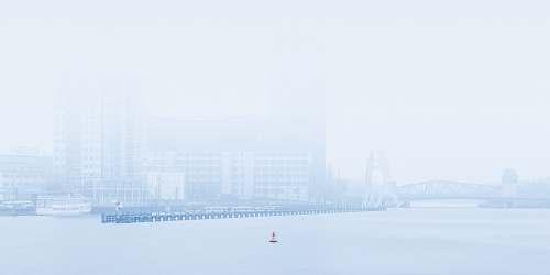 nature city covered in fog fog